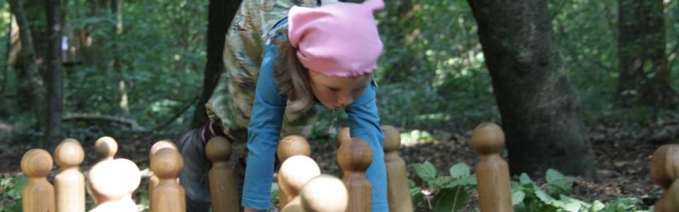 ameisenstaat erklärt für kinder